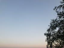 天蓝色的天空 免版税库存图片