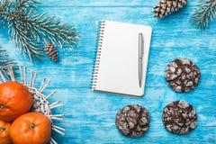 天蓝色的木背景 冷杉绿色结构树 曲奇饼 果子用普通话 圣诞节贺卡和新年 免版税图库摄影