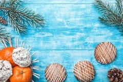 天蓝色的木背景 冷杉绿色结构树 果子用普通话和甜点 圣诞卡或新年 免版税图库摄影