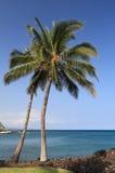 天蓝色的海滩喂kona掌上型计算机 库存图片