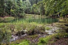 天蓝色的湖,波兰 库存照片