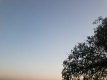 天蓝色的美丽的天空 库存图片