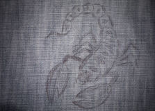 天蝎座的图象 免版税库存照片
