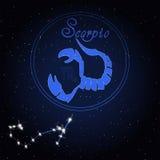天蝎座黄道带的占星术星座 免版税库存图片