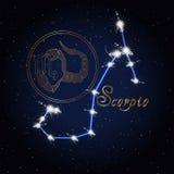 天蝎座黄道带的占星术星座 库存图片