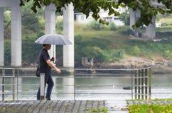 天雨 免版税库存照片