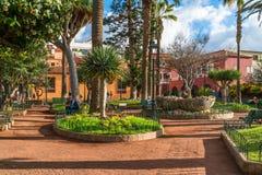 天鹅喷泉,普埃尔托德拉克鲁斯,特内里费岛 免版税库存图片