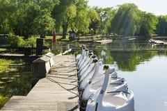 天鹅塑造了充电在栈桥的小船在湖附近 库存图片