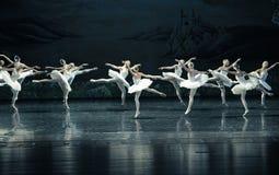天鹅家庭芭蕾天鹅湖 库存图片