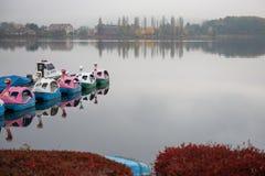 天鹅小船在Kawaguchiko湖在服务范围外在下雨天中 库存照片