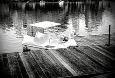 天鹅小船行在湖称呼black&white 免版税库存图片