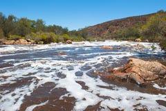 天鹅河原野珀斯西澳州 图库摄影