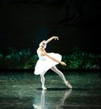 天鹅游泳芭蕾天鹅湖 免版税库存图片