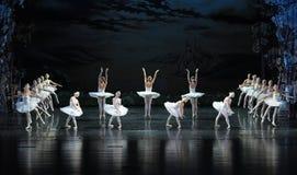 天鹅湖岸芭蕾天鹅湖 免版税图库摄影