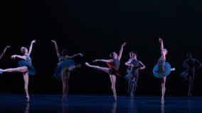 天鹅翼古典芭蕾` Austen汇集` 免版税图库摄影