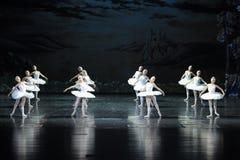 天鹅部落芭蕾天鹅湖 库存图片