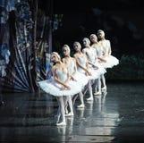 天鹅队列芭蕾天鹅湖 免版税库存图片