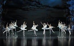 天鹅飞行在湖芭蕾天鹅湖 免版税库存图片