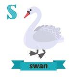天鹅 S信件 逗人喜爱的在传染媒介的儿童动物字母表 滑稽的c 库存图片