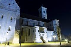 天主教大教堂圣迈克尔 免版税图库摄影