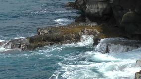 太平洋打击的夏威夷海岸线 影视素材