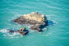太平洋沿海峭壁场面 免版税图库摄影