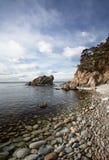 太平洋海岸5 免版税库存照片