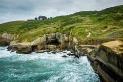 太平洋遇见含沙峭壁,隧道海滩,达尼丁,新西兰 库存图片
