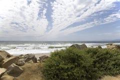 太平洋 库存图片