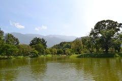 太平湖公园(塔曼Tasik太平) 免版税图库摄影