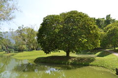 太平湖公园(塔曼Tasik太平) 库存图片