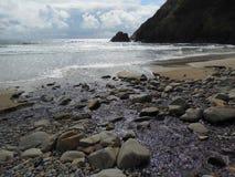 太平洋沿海海滩印第安角Ecola国家公园俄勒冈 免版税库存照片