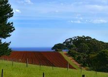 太平洋海岸。澳大利亚。 免版税库存图片