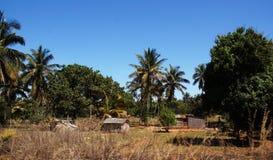太平洋海岸的非洲村庄 库存照片
