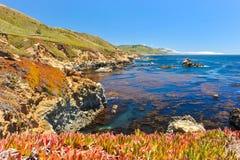 太平洋风景Garrapata国家公园的 免版税库存照片