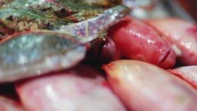 太平洋龙虾新近地捉住了海鲜与美好的bokeh的鱼市 1920x1080 股票录像
