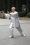 太极拳  免版税库存照片
