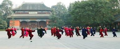 ?? di Tai Chi Fotografie Stock Libere da Diritti