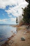 太浩湖海岸线在加利福尼亚 免版税库存照片