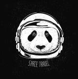 太空帽熊猫 免版税图库摄影