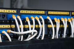以太网电缆被连接到服务器 免版税库存照片
