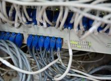 以太网电缆被连接到计算机互联网服务器 库存照片