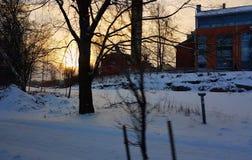 太阳上升和树 库存照片