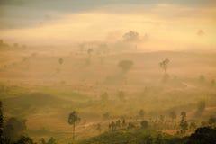 太阳上升自然场面  库存图片