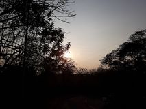太阳亲吻了早晨 免版税库存照片