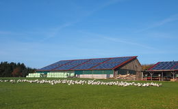 太阳供给动力的谷仓 免版税库存照片