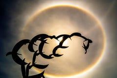 太阳光晕和鸟雕象 库存图片