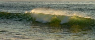 太阳光由后照的小绿色海浪 图库摄影