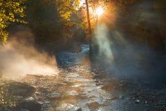 太阳光芒穿过在河的神仙的薄雾 剧烈的五颜六色的风景 免版税库存照片