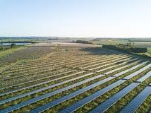 太阳农场 库存照片